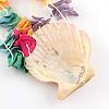 Dyed Seashell Aeolian BellsAJEW-Q108-01-5