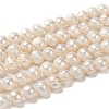 Grade B Natural Cultured Freshwater Pearl Beads StrandsX-PEAR-L001-G-14-6