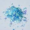 Plastic Candy Sequins/Paillette ChipX-DIY-I019-01M-2
