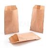 Environmental Kraft Paper BagsCARB-I001-05-3